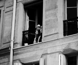 Fenêtres sur cour 23